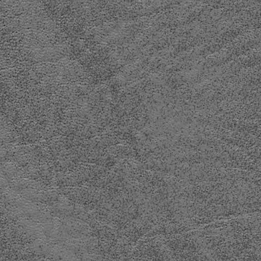 Coastal Gray